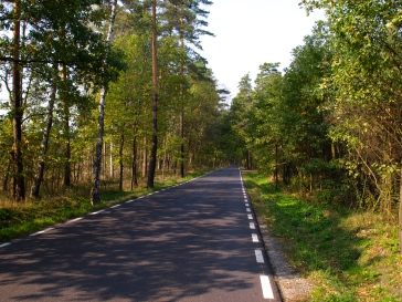 Leaving Miedzyrzecze - riding through the forests