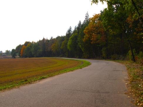 The Polish Autumn