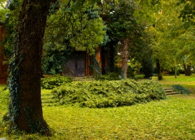 The Jewish cementary in Breclav