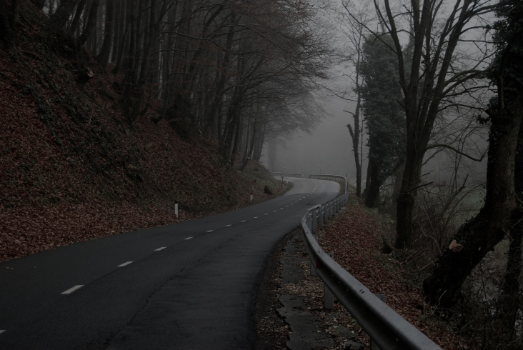 Last kilometeres in Slovenia cycled alone (it was getting quite foggy)