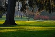 Maribor's park in December..