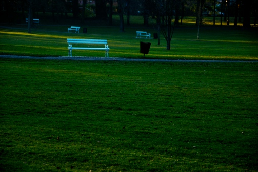 White abandoned benches at Maribor's park