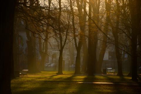 Maribor's park in December.. (quite autumnish, isn't it?)