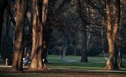 Maribor's park